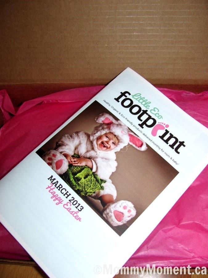 Little Eco Footprint newsletter