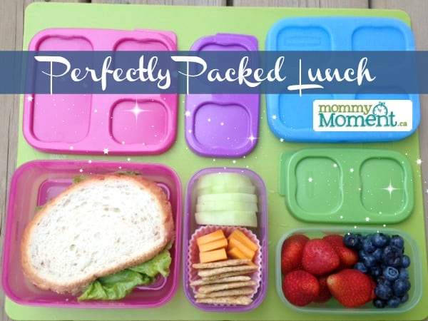 perfectly packed lunch