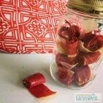 HOMEMADE watermelon fruit rolls