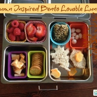 Autumn Bento Style Lovable Lunch