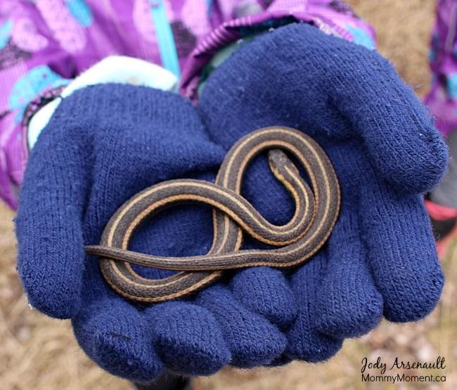 child-holding-snake