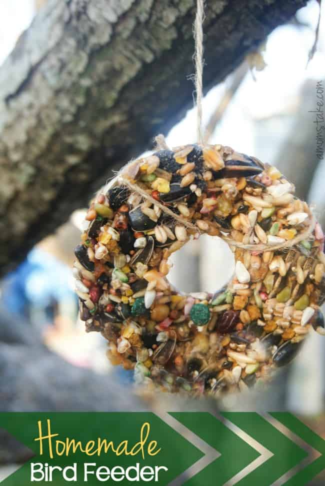 Homemade-Bird-Feeder