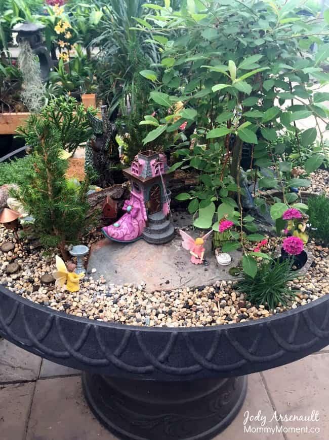 Big Fairy Garden