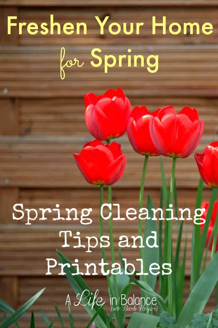 spring cleaning tips printables. SPRING CLEANING TIPS AND TRICKS   Mommy Moment