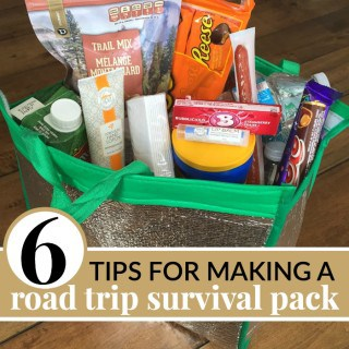 6 TIPS TO MAKING THE BEST ROAD TRIP SURVIVAL PACK