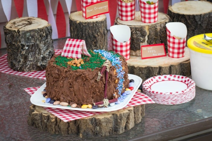 CAMPING THEMED BIRTHDAY PARTY Mommy Moment