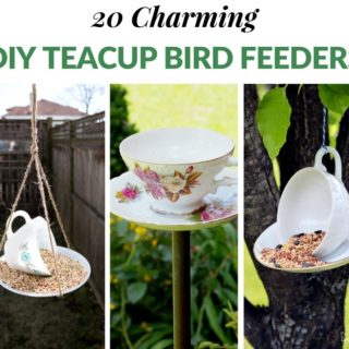20 CHARMING DIY TEACUP BIRD FEEDERS