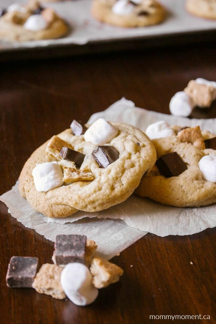 Chocolate Chip Cookie with graham pieces