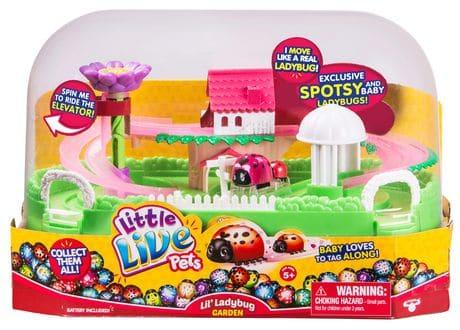 Lil' Ladybug Garden