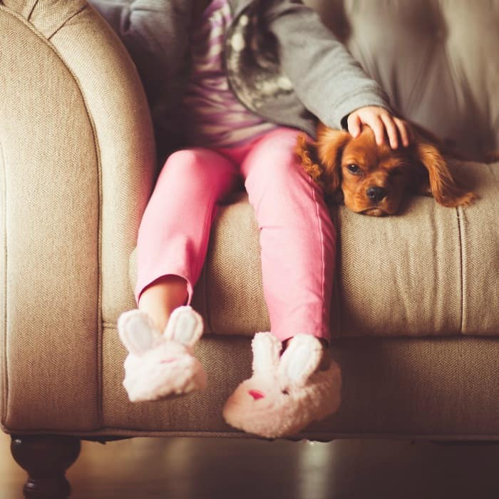 The Benefits of Having a Family Pet
