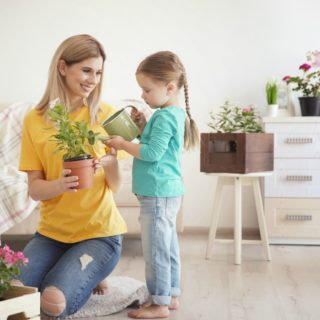 GREAT INDOOR PLANTS THAT ARE SAFE FOR CHILDREN